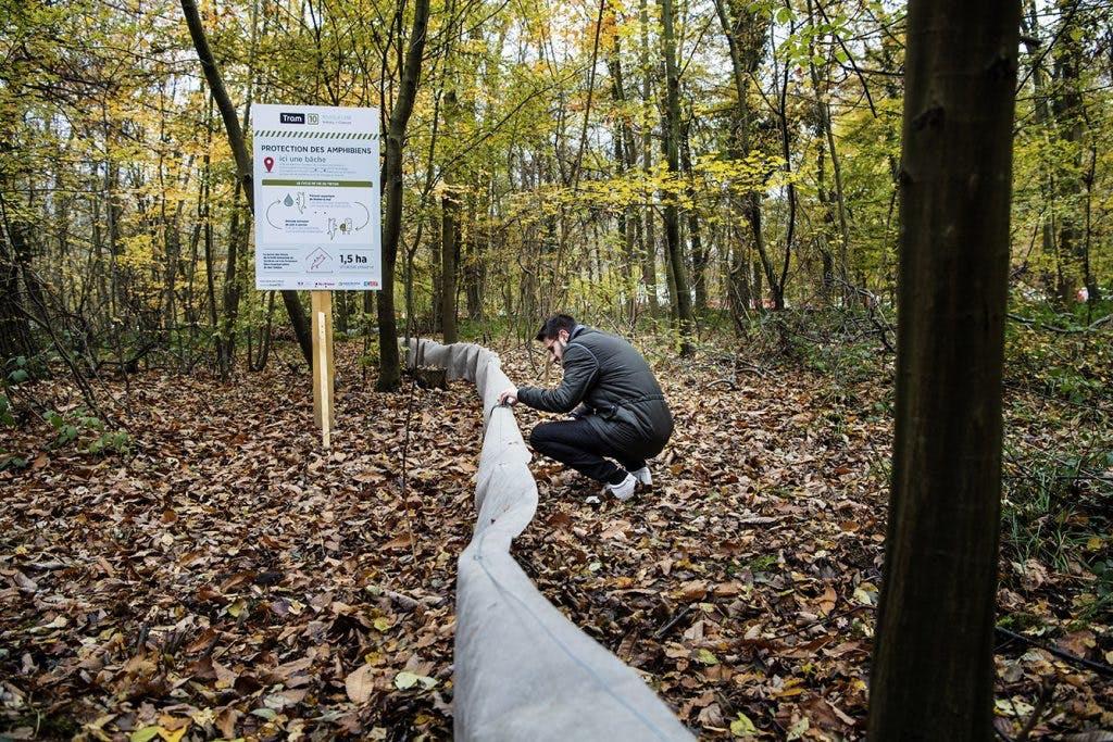 Personne posant des points de repère dans la forêt